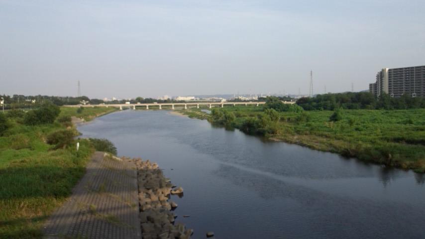 多摩サイ 日野橋 8.18