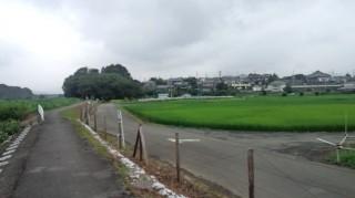 秋川サイクリングロード2 8.1
