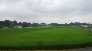 秋川サイクリングロード3 8.1
