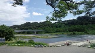 多摩サイ 羽村堰 8.5
