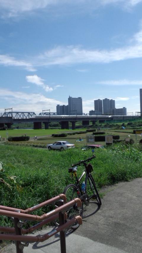 多摩サイ 東海道新幹線