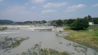 多摩サイ 羽村堰下橋 9.8