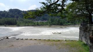 多摩サイ 羽村堰 9.8