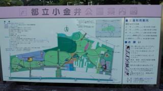 小金井公園_2 2011.9.19