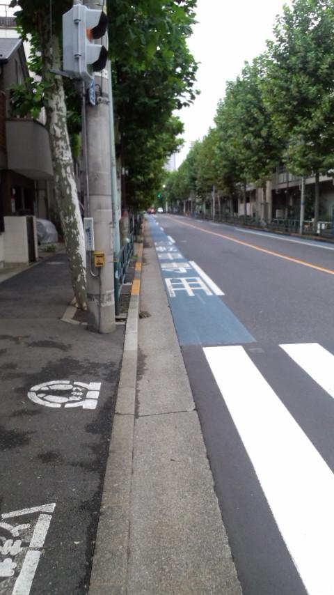 都道431号 新宿 自転車レーン