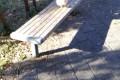 根川貝殻坂橋のニワトリ