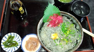 江ノ島 生しらす丼