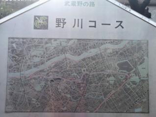 武蔵野の路 野川コース