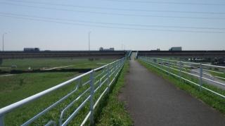 新利根川橋 迂回路