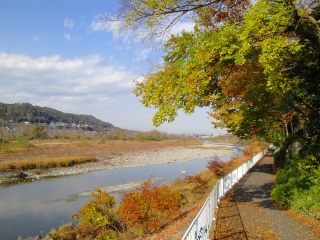 多摩サイ 永田橋付近