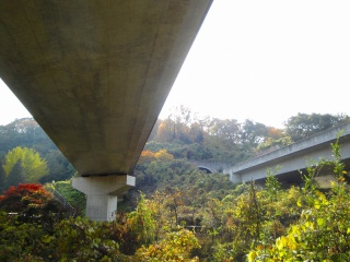 大荷田川 圏央道