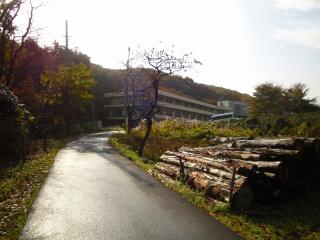 大荷田川 多摩リハビリテーション病院