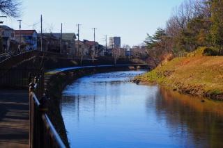 柳瀬川サイクリング