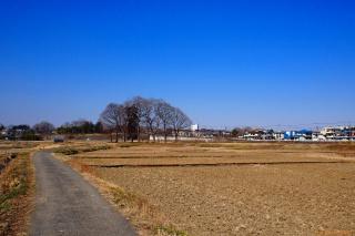 秋川右岸 あきる野市小川町付近