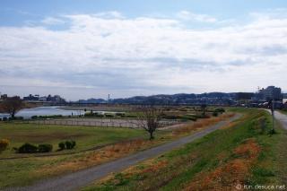 多摩サイ右岸 聖蹟桜ヶ丘付近
