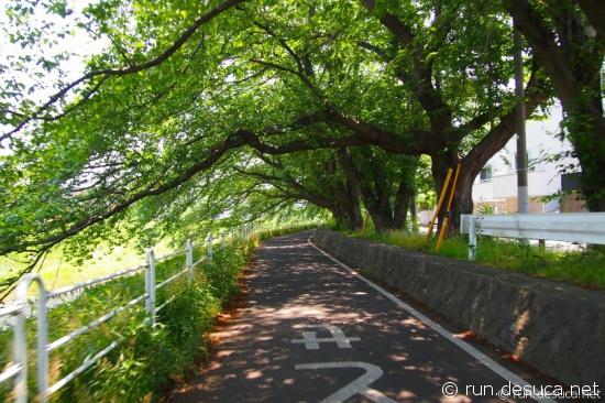 02 境川サイクリングロード2