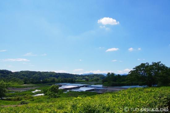 多摩サイ (3)