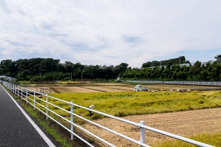 境川サイクリングロード 2014秋
