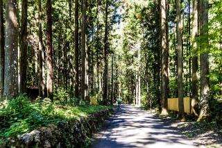 檜原村 神戸岩 サイクリング