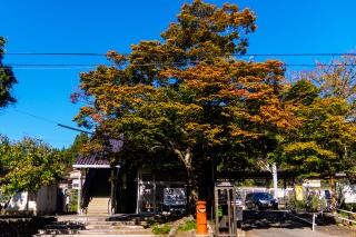 JR日向和田駅