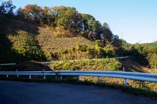 盆堀林道 入山峠へ