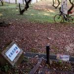 北条氏照 墓