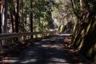 梅ノ木峠 ロードバイク