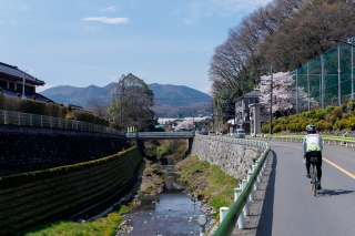 陣馬街道 ロードバイク