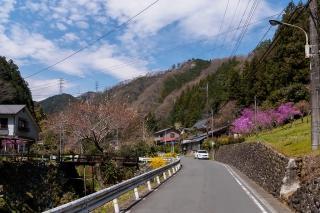 入山峠 ロードバイク