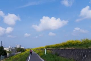 入間川サイクリング