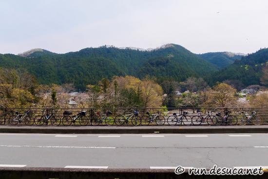 入間川 名栗川