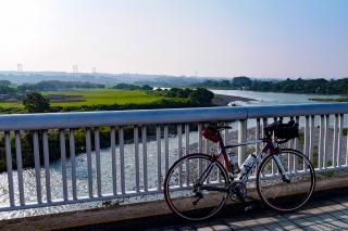 相模川サイクリング 昭和橋