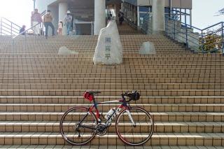 湘南平 ロードバイク
