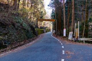 裏和田 ロードバイク