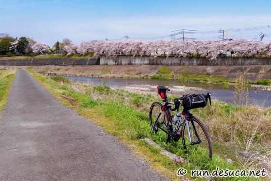 秋川右岸 多摩川合流付近