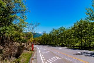 柳沢峠 大菩薩ライン ロードバイク