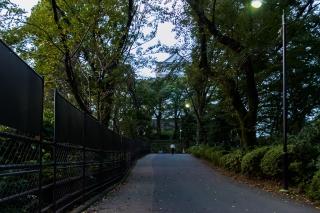 小田原城 自転車での入り方