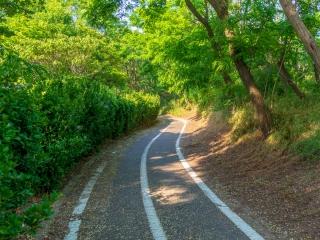 新潟島一周 自転車