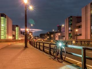 豊洲市場 富士見橋 自転車レーン